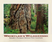 Whistler's Wilderness Poster, Graham Osborne
