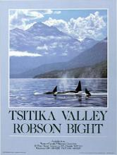 Orcas Passage, Tsitika Valley - Art Poster, Ron Parker