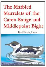 Marbled Murelets of the Caren Range, Paul Harris Jones